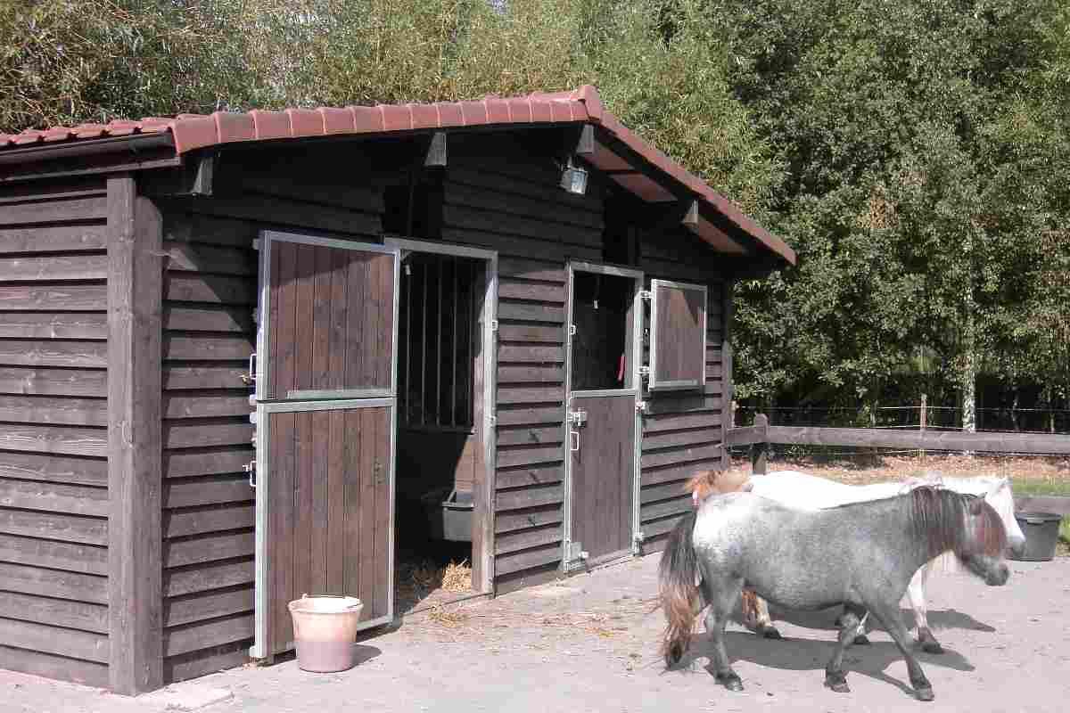 Paardenstallen for Te koop woning met paardenstallen